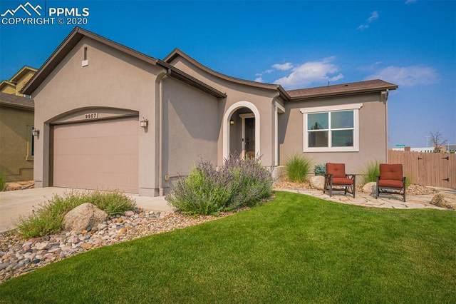 9907 Paonia Park Place, Colorado Springs, CO 80924 (#1510673) :: 8z Real Estate