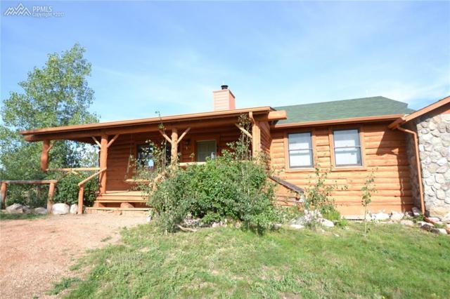 19510 Mariah Trail, Colorado Springs, CO 80908 (#1515838) :: 8z Real Estate