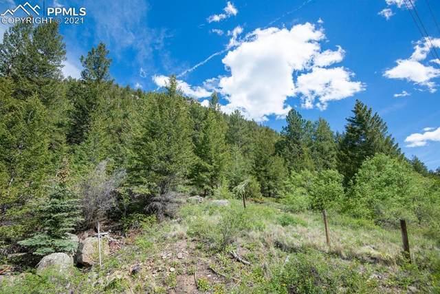 0 Bard Creek Road, Empire, CO 80432 (#1521362) :: Hudson Stonegate Team