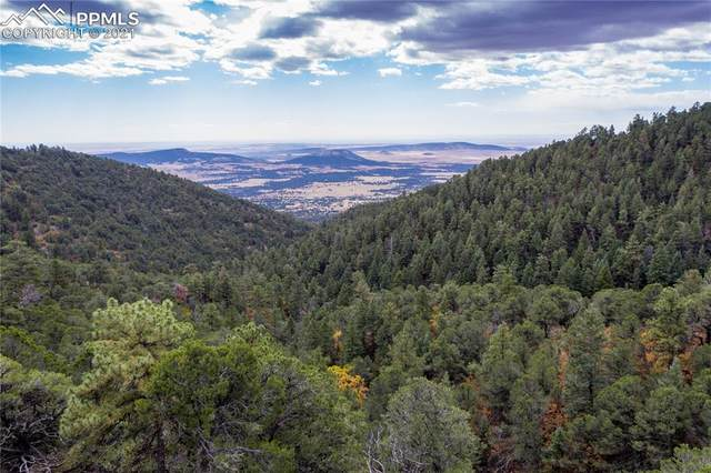 Lot 8 Henry Ride Heights, Colorado Springs, CO 80926 (#1524045) :: The Gold Medal Team with RE/MAX Properties, Inc