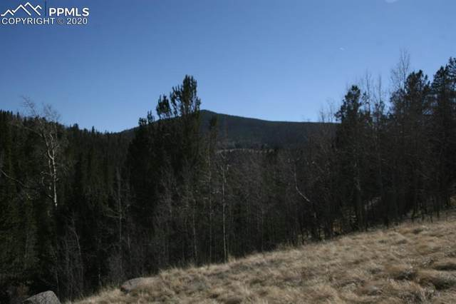 TBD County Road 61 Road, Cripple Creek, CO 80813 (#1526270) :: Finch & Gable Real Estate Co.