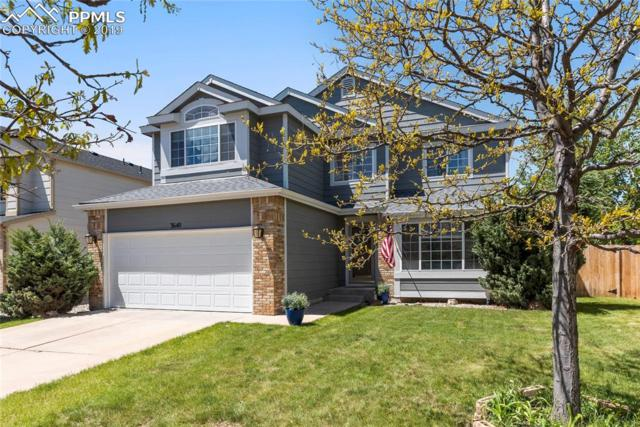 3640 Bareback Drive, Colorado Springs, CO 80922 (#1526300) :: Perfect Properties powered by HomeTrackR