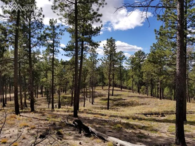 LOT 60 Unknown, Colorado Springs, CO 80908 (#1526903) :: Action Team Realty