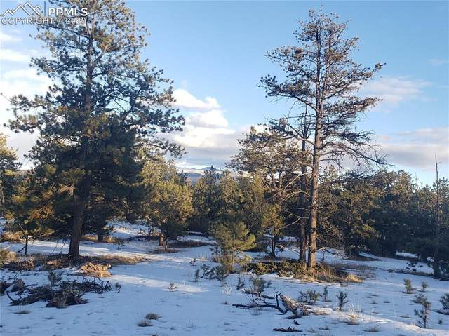 126 Rainier Drive, Florissant, CO 80816 (#1531790) :: 8z Real Estate