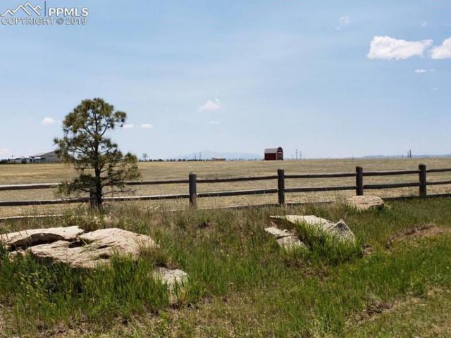 24935 Cave Spring Trail, Elbert, CO 80106 (#1534320) :: The Peak Properties Group