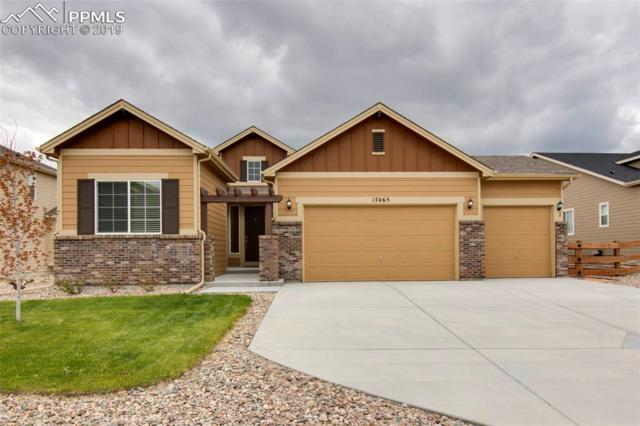 17465 Leisure Lake Drive, Monument, CO 80132 (#1535445) :: Action Team Realty