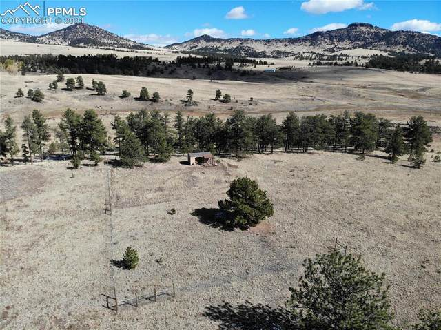 6309 County Road 102, Guffey, CO 80820 (#1537659) :: Tommy Daly Home Team