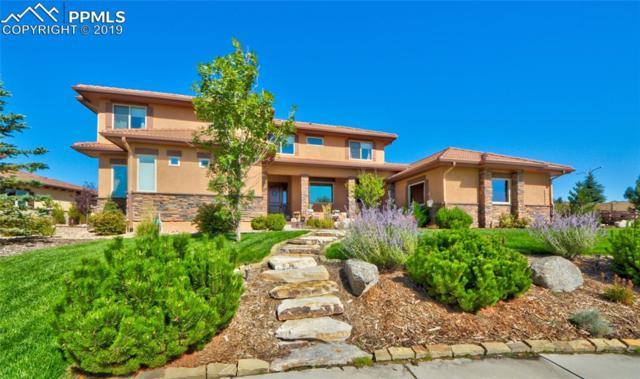 13665 Random Ridge View, Colorado Springs, CO 80921 (#1539417) :: Colorado Home Finder Realty