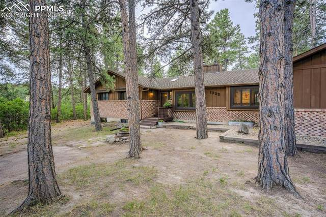 1322 Deer Creek Road, Monument, CO 80132 (#1539491) :: Tommy Daly Home Team