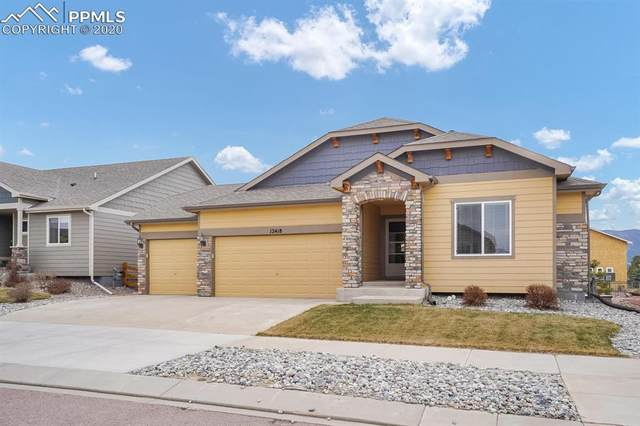 12418 Salmon Stone Point, Colorado Springs, CO 80921 (#1547906) :: Tommy Daly Home Team