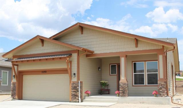 5292 Kenosha Pass Court, Colorado Springs, CO 80924 (#1555048) :: Jason Daniels & Associates at RE/MAX Millennium