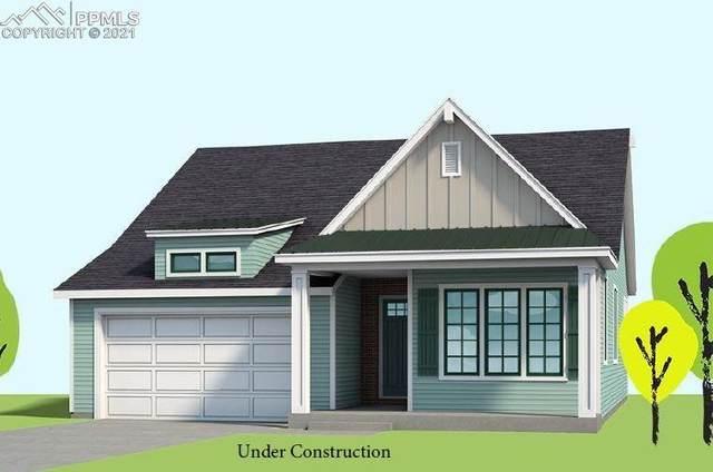 4861 Horse Gulch Loop, Colorado Springs, CO 80924 (#1555396) :: Simental Homes | The Cutting Edge, Realtors