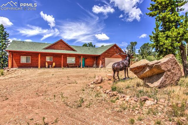 6981 County 8 Road, Cripple Creek, CO 80813 (#1563584) :: The Treasure Davis Team