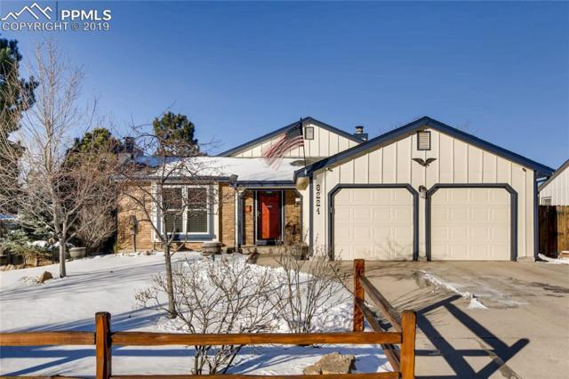 8224 Timothy Court, Colorado Springs, CO 80920 (#1564336) :: CENTURY 21 Curbow Realty