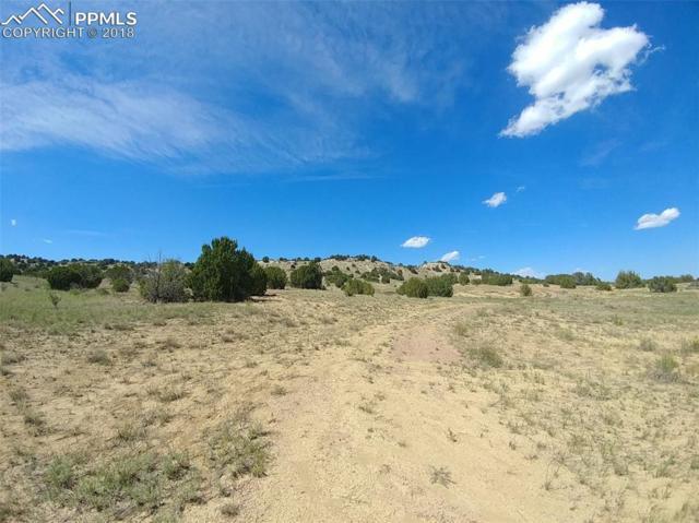 TBD Milton Smith Lane, Pueblo, CO 81004 (#1564817) :: Venterra Real Estate LLC