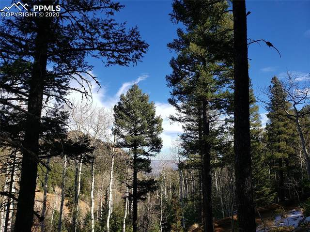 329 Waterfall Loop, Manitou Springs, CO 80829 (#1566292) :: Action Team Realty