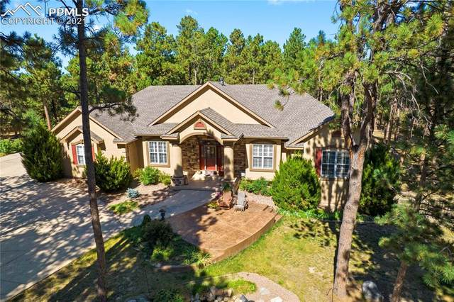 17940 Queensmere Drive, Monument, CO 80132 (#1566467) :: Simental Homes   The Cutting Edge, Realtors