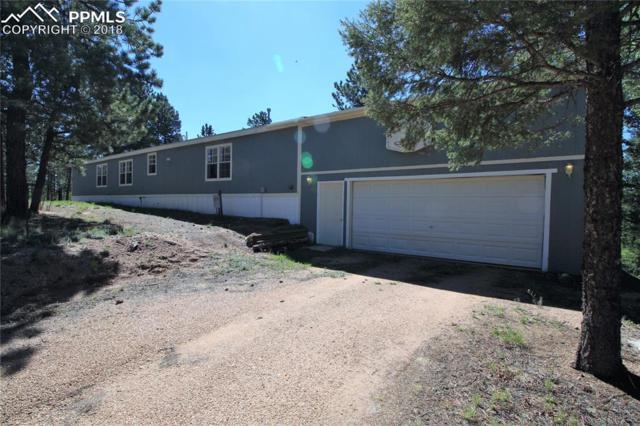 24 Spruce Creek Road, Divide, CO 80814 (#1566858) :: Jason Daniels & Associates at RE/MAX Millennium