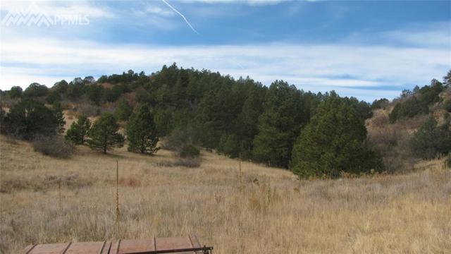 TBD Cap Rock Lane, Canon City, CO 81212 (#1569545) :: Colorado Home Finder Realty