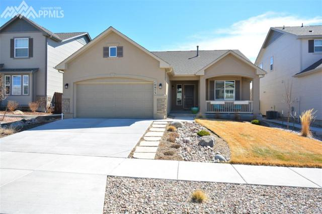 10973 Echo Canyon Drive, Colorado Springs, CO 80908 (#1569877) :: Action Team Realty