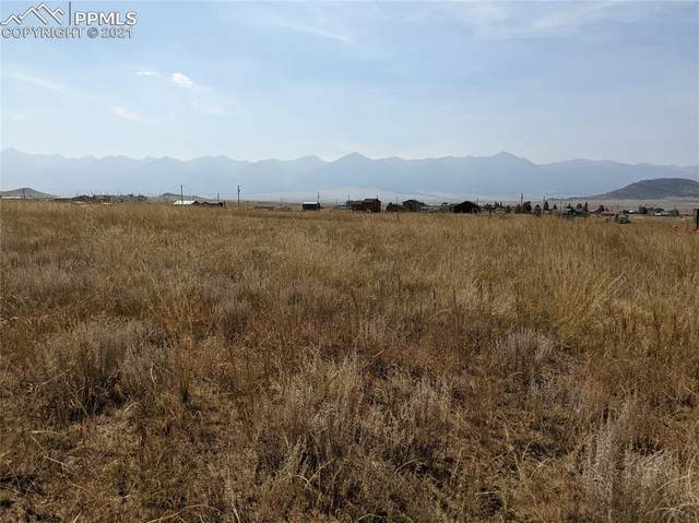 TBD William Avenue, Westcliffe, CO 81252 (#1570057) :: Fisk Team, eXp Realty