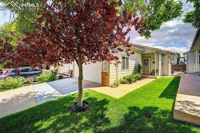 1130 Samuel Point, Colorado Springs, CO 80906 (#1575116) :: Tommy Daly Home Team