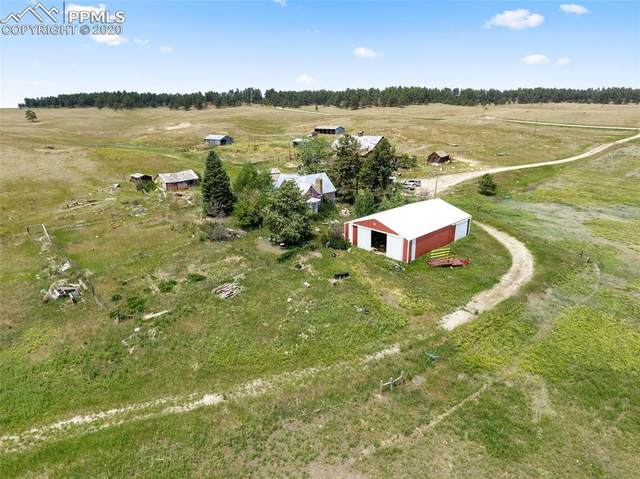 10565 E County Line Road, Elbert, CO 80106 (#1575206) :: Tommy Daly Home Team