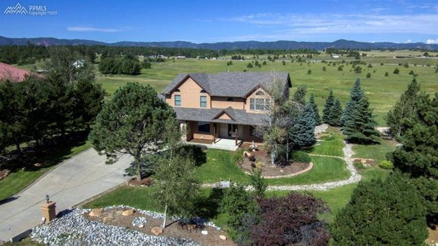 20260 Doewood Drive, Monument, CO 80132 (#1581084) :: 8z Real Estate