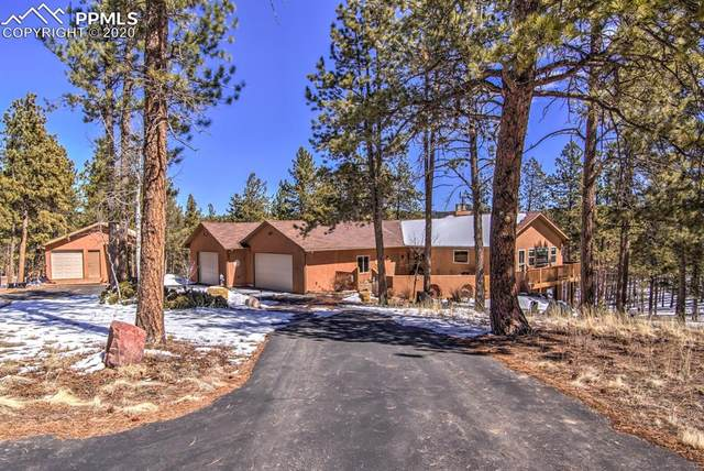 126 Druid Trail, Florissant, CO 80816 (#1581218) :: 8z Real Estate