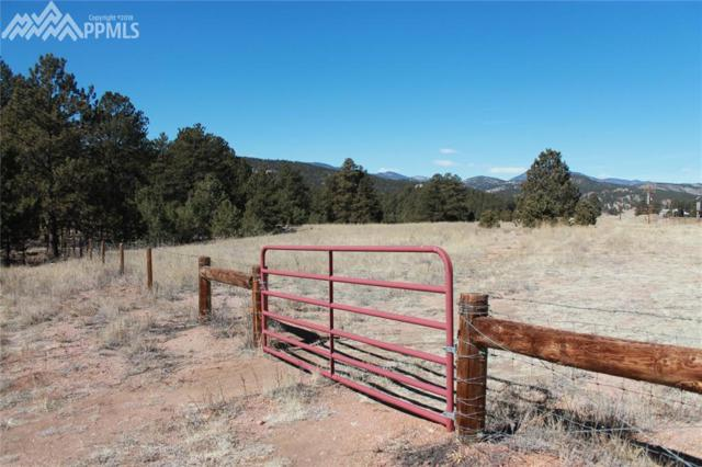 000 W Highway 24 Highway, Lake George, CO 80827 (#1585160) :: Action Team Realty