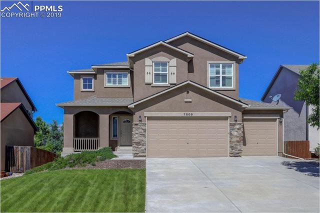7509 Campstool Drive, Colorado Springs, CO 80922 (#1588743) :: Tommy Daly Home Team