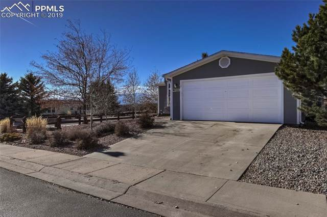 4686 Gray Fox Heights, Colorado Springs, CO 80922 (#1590130) :: Tommy Daly Home Team