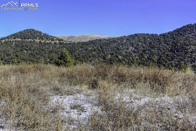 TBD Lot 39 Canyon Terrace, Canon City, CO 81212 (#1594329) :: Colorado Home Finder Realty