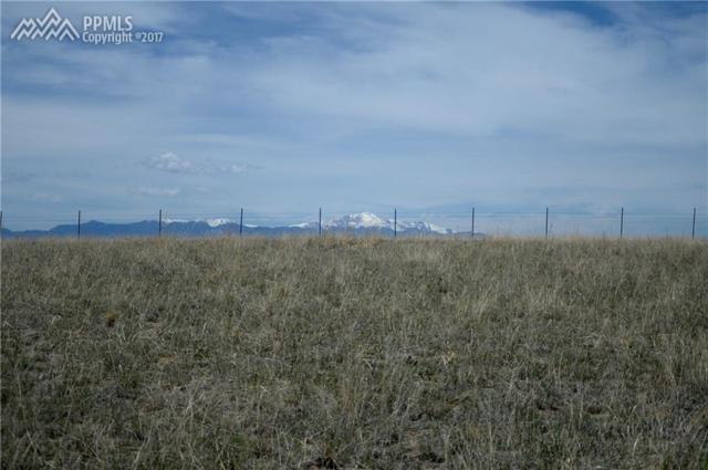 1150 Engleby Drive, Colorado Springs, CO 80930 (#1598207) :: Action Team Realty