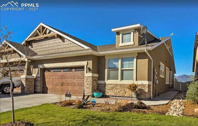 11383 Rill Point, Colorado Springs, CO 80921 (#1598806) :: Tommy Daly Home Team