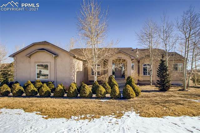 19645 Insborough Court, Monument, CO 80132 (#1599473) :: The Harling Team @ HomeSmart