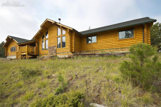3025 County 1 Road, Cripple Creek, CO 80813 (#1601248) :: 8z Real Estate