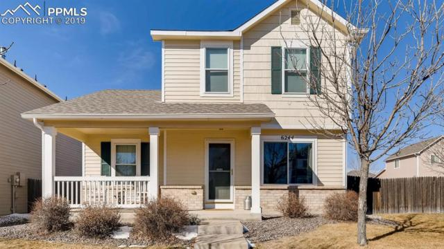 6244 Scottsbluff Drive, Colorado Springs, CO 80923 (#1602299) :: Action Team Realty