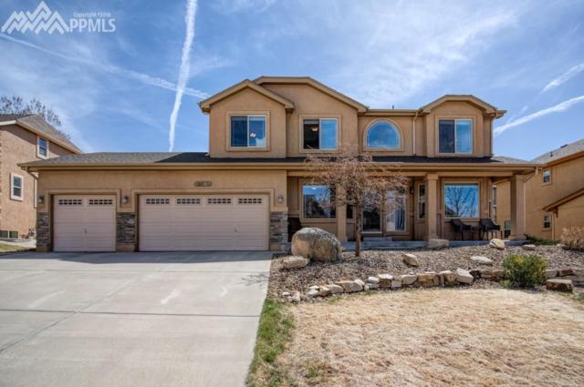 12563 Broad Oaks Drive, Colorado Springs, CO 80921 (#1604648) :: 8z Real Estate