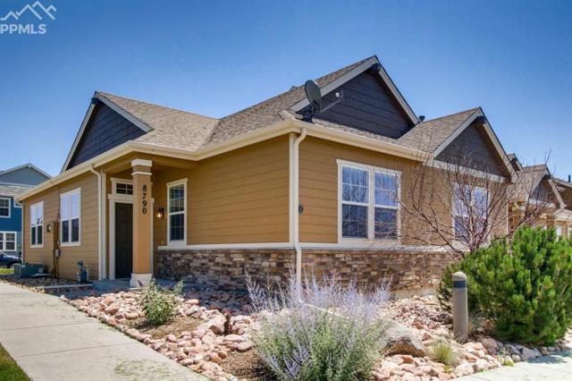 8790 Quinn Point, Colorado Springs, CO 80924 (#1605153) :: Jason Daniels & Associates at RE/MAX Millennium