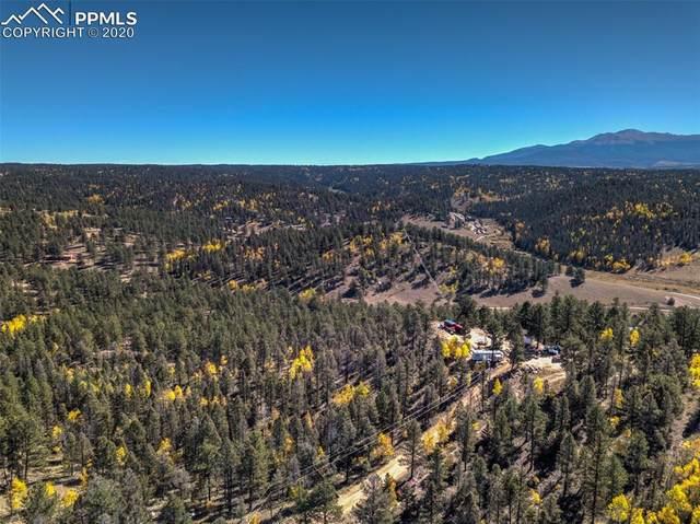72 Buffalo Creek Trail, Florissant, CO 80816 (#1606318) :: The Treasure Davis Team