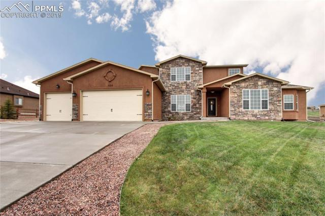 1135 Woodmoor Acres Drive, Monument, CO 80132 (#1607498) :: Action Team Realty