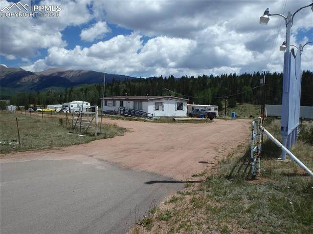 10702 S Highway 67 Highway, Cripple Creek, CO 80813 (#1608211) :: Tommy Daly Home Team