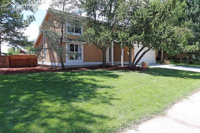 3823 Windsong Court, Colorado Springs, CO 80917 (#1608455) :: 8z Real Estate
