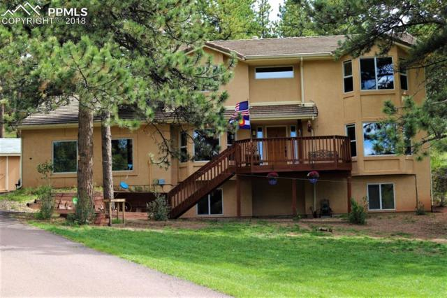 635 Sun Valley Drive, Woodland Park, CO 80863 (#1611795) :: CC Signature Group