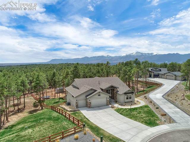 16021 Fox Mesa Court, Monument, CO 80132 (#1612402) :: Action Team Realty