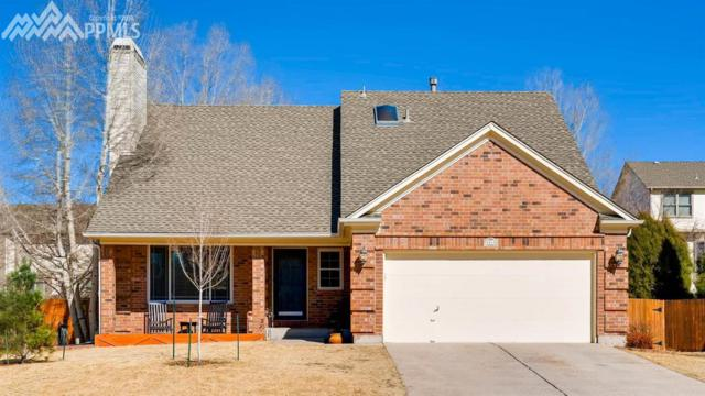 8045 Nectar Drive, Colorado Springs, CO 80920 (#1613820) :: 8z Real Estate
