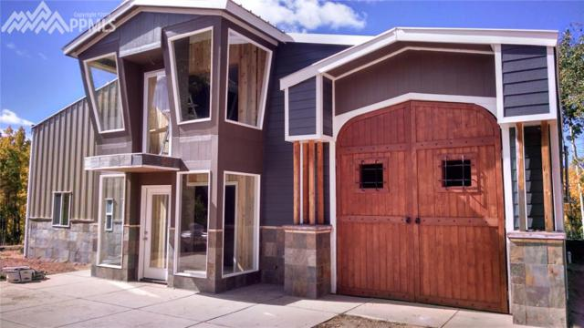 1626 County 61 Road, Cripple Creek, CO 80813 (#1613909) :: Action Team Realty