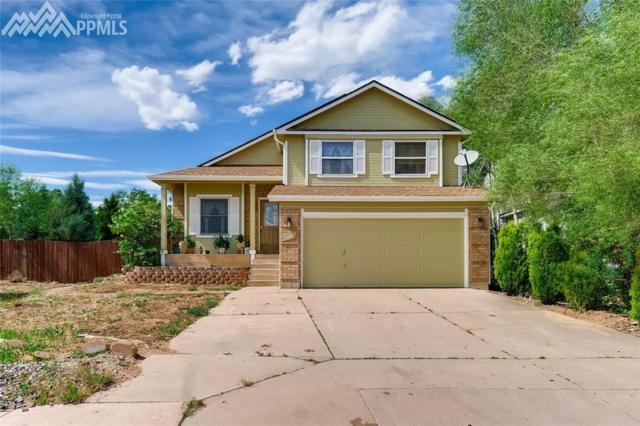 1006 Scarlet Oak Drive, Colorado Springs, CO 80906 (#1614429) :: 8z Real Estate