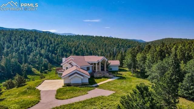 4755 Elk Valley Road, Divide, CO 80814 (#1617594) :: Finch & Gable Real Estate Co.